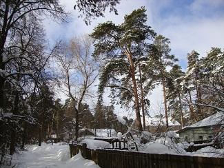 наш мир - зима