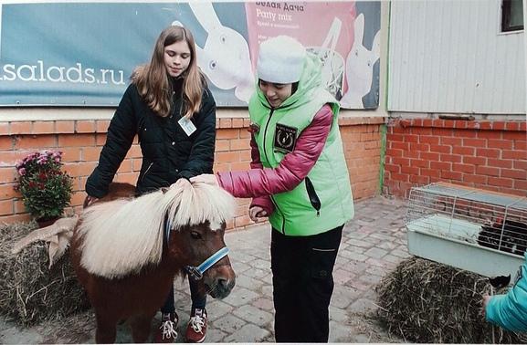Золотая Осень 2019 - Лиза. Фото с мини лошадью (mini horse)