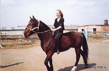 Иппотерапия в Иванове и Ивановской области - Дневник иппотерапевта - Справиться со страхом перед лошадьми