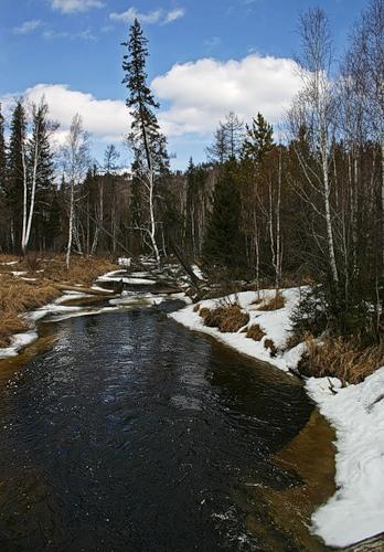 Иппотерапия в Иванове и Ивановской области - Дневник иппотерапевта - И вот уже наступила весна...