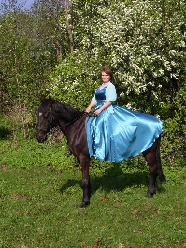Прогулки на лошадях - Прогулки на лошадях