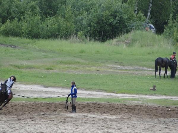 Верховая езда / Конный спорт - Наше поле