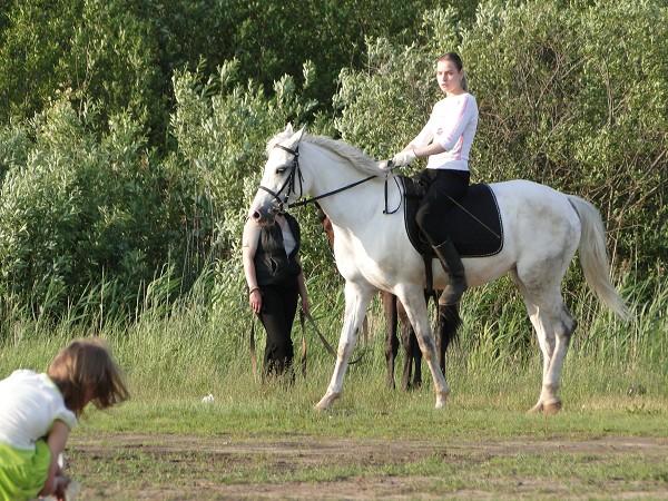 Верховая езда / Конный спорт - Тренировка. Лена на Нике