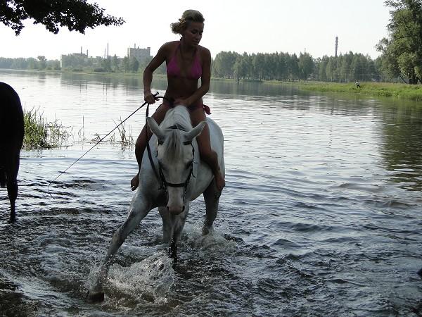 Лошади - Купание.