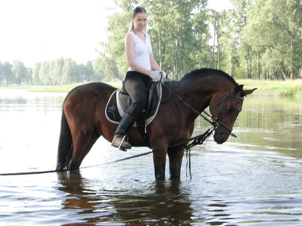 Лошади - Лена на Паше