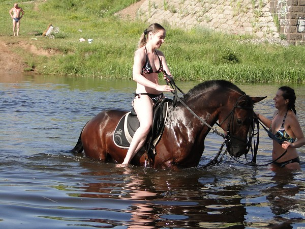 Лошади - Купание. Лена и Водопад