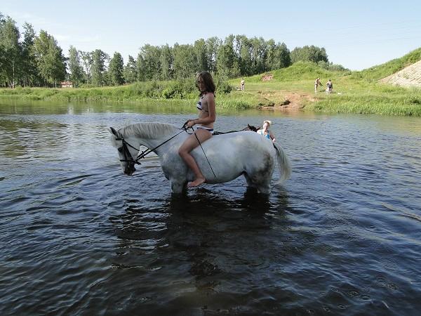 Лошади - Яна на Нике