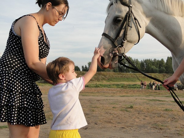 Иппотерапия и лечебная верховая езда (ЛВЕ) - Лиза и Ника