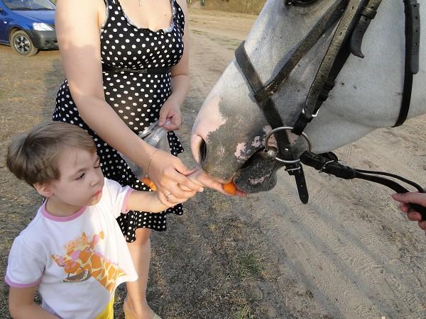 Иппотерапия и лечебная верховая езда (ЛВЕ) - Иппотерапия. Лиза и Ника (кормим лошадку)