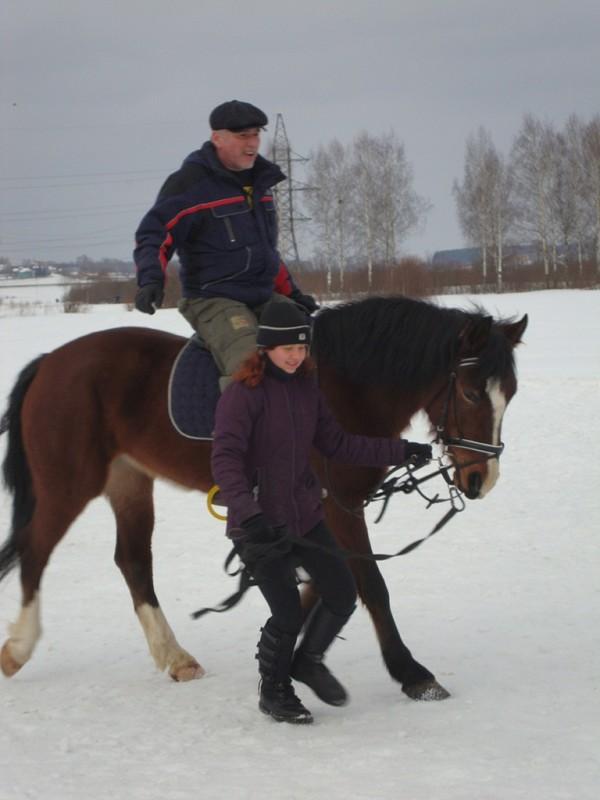 Верховая езда / Конный спорт - Верховая езда. Новички