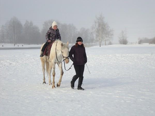 Иппотерапия и лечебная верховая езда (ЛВЕ) - Иппотерапия. Даша