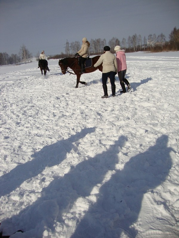 Иппотерапия и лечебная верховая езда (ЛВЕ) - ЛВЕ.  Ольга на Хохме (рысь)