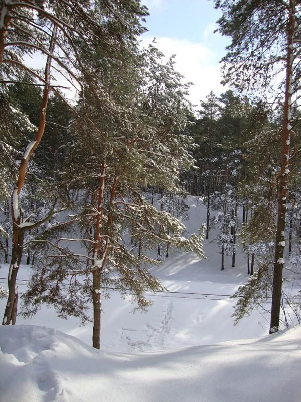 наш мир - В парке. Следы на снегу