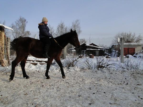 Лошади - Водопад и я