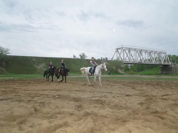 Верховая езда / Конный спорт - Перемена направления