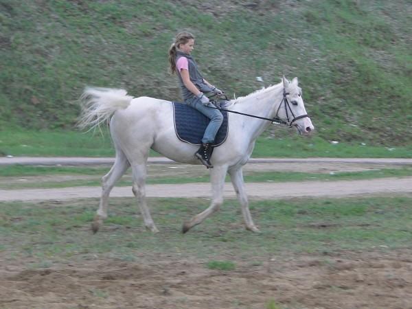 Верховая езда / Конный спорт - Соня и Ника