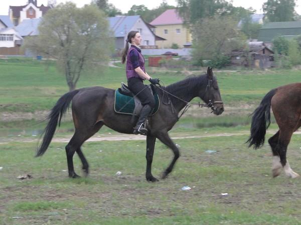 Верховая езда / Конный спорт - Вера и Волна