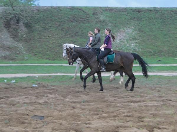 Верховая езда / Конный спорт - Тройка