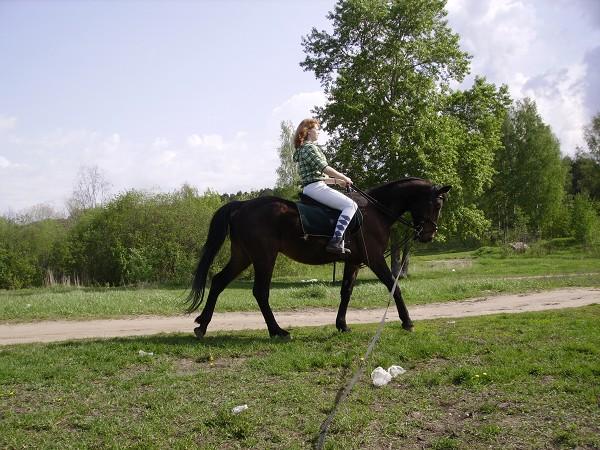 Верховая езда / Конный спорт - Тренировка (лето 2012) Ксюша наПаше