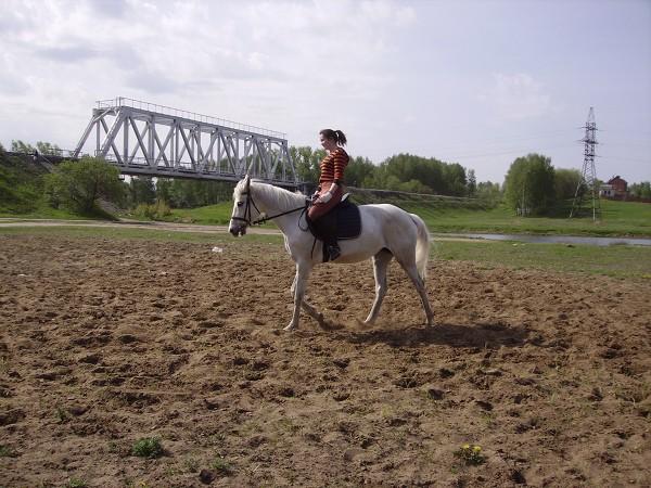 Верховая езда / Конный спорт - Оля и Ника