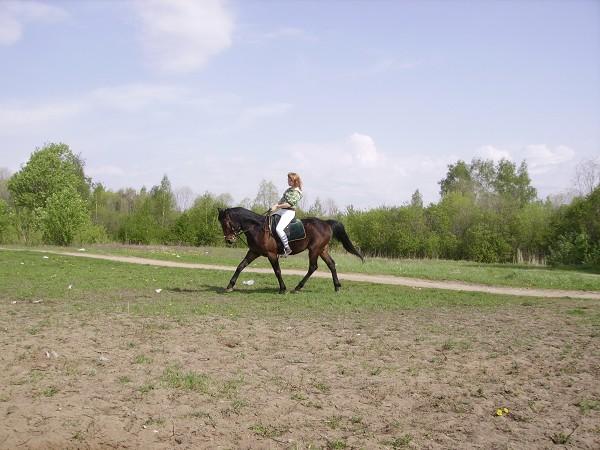 Верховая езда / Конный спорт - Тренировка. Паша старается
