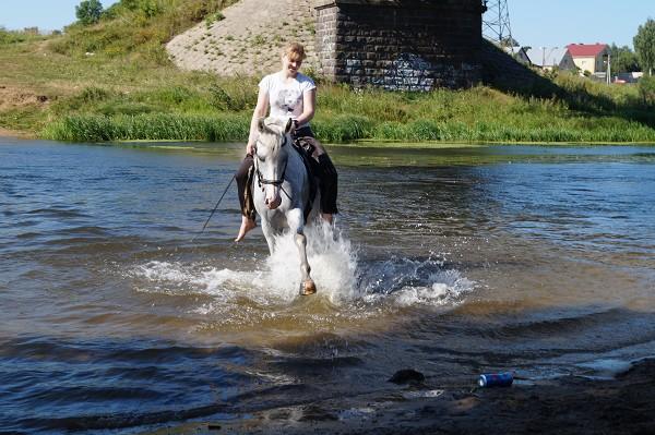 Верховая езда / Конный спорт - После тренировки