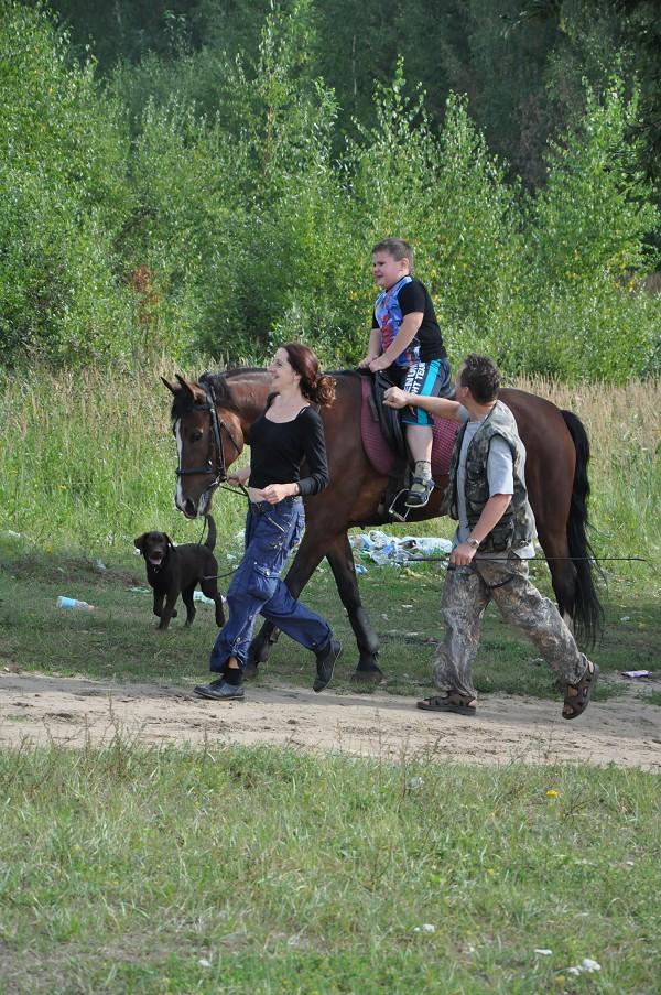 Иппотерапия и лечебная верховая езда (ЛВЕ) - Иппотерапия. Август 2014
