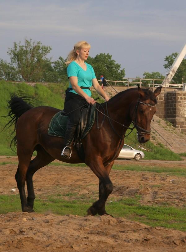 Верховая езда / Конный спорт - Теплым летним вечером. Людмила и Паша