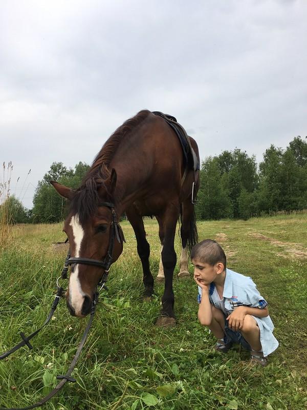 Иппотерапия и лечебная верховая езда (ЛВЕ) - Максим наблюдает за Хохмой