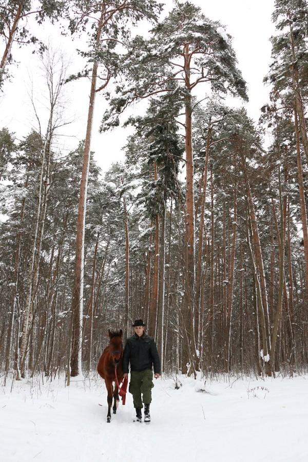 Лошади - Зимние прогулки