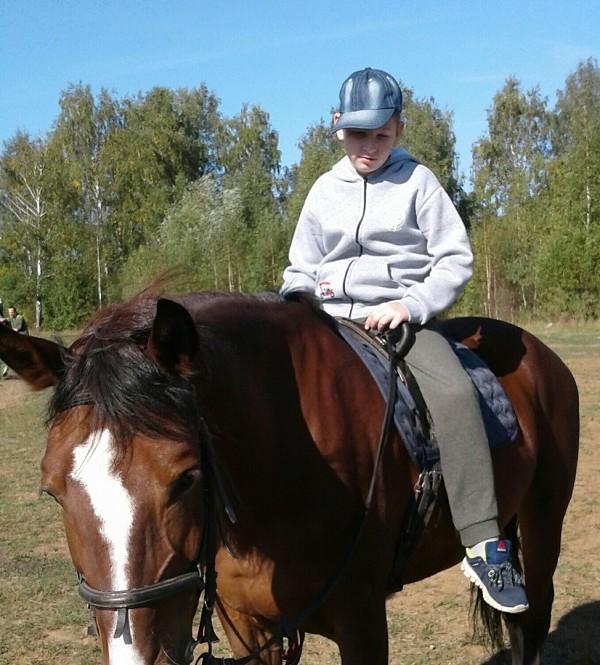 Иппотерапия и лечебная верховая езда (ЛВЕ) - Руслан на Хохме