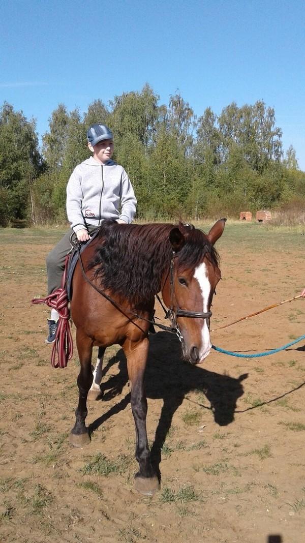 Иппотерапия и лечебная верховая езда (ЛВЕ) - Подготовка к соревнованиям Руслан Бадтиев