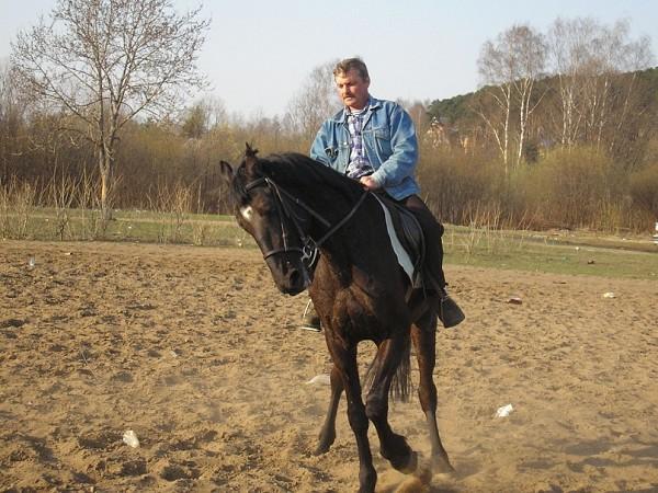 Верховая езда / Конный спорт - Юрий Палыч на Кэпе...