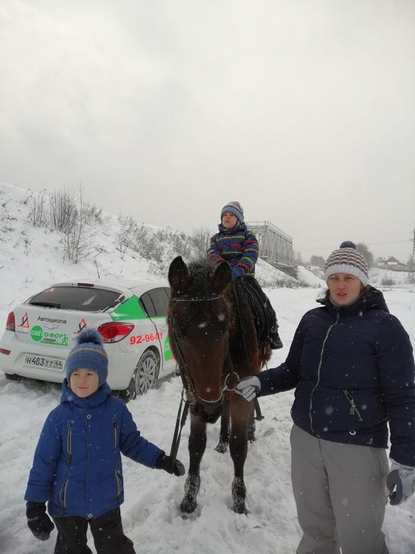 Иппотерапия в Иванове и Ивановской области - Дневник иппотерапевта - -Папа, а когда мы уже купим своих лошадок?