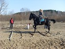 Верховая езда / Конный спорт - Кавалетти