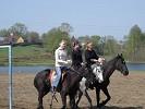 Верховая езда / Конный спорт - Езда тройкой