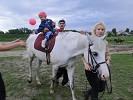 Иппотерапия и лечебная верховая езда (ЛВЕ) - Маша. Играем с мячиком