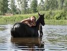 Лошади - Яна и Волна