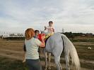 Иппотерапия и лечебная верховая езда (ЛВЕ) - Иппотерапия. Упражнения