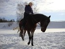Верховая езда / Конный спорт - Верховая езда. Людмила на Волне