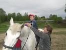 Иппотерапия и лечебная верховая езда (ЛВЕ) - Тема на Нике (иппотерапия)