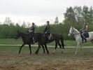 Верховая езда / Конный спорт - Стараются