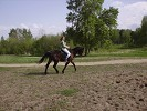 Верховая езда / Конный спорт - Ксюша и Паша