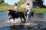 Верховая езда / Конный спорт - Купание. Август 2014