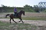 Верховая езда / Конный спорт - Водопад