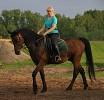 Верховая езда / Конный спорт - Люда и Паша