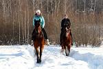 Верховая езда / Конный спорт - Январь 2018. Евгения и Водопад, Мария и Хохма