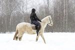 Верховая езда / Конный спорт - март 2018. Елена и Ника