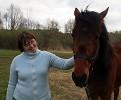 Лошади - Аристократ совсем большой