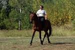 Верховая езда / Конный спорт - Кордео - очень тонкое средство управления, позволяющее добиться полного единения с лошадью.